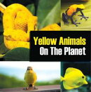 Yellow Animals On The Planet
