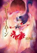 美少女戦士セーラームーン 完全版(3)
