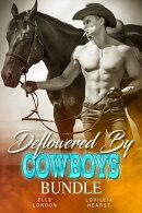 Deflowered By Cowboys Bundle