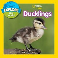 Explore My World: Ducklings【電子書籍】[ Marfe Ferguson Delano ]