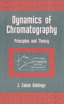 Dynamics of Chromatography