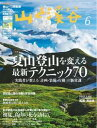 月刊山と溪谷 2017年6月号【電子書籍】