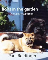 LionsintheGarden:ACanineMeditation