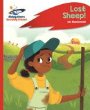 Reading Planet - Lost Sheep! - Red C: Rocket Phonics