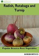 Radish, Rutabaga and Turnip