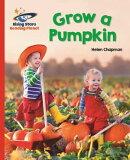 Reading Planet - Grow a Pumpkin - Red B: Galaxy