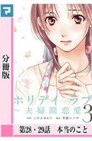 ホリデイラブ 〜夫婦間恋愛〜【分冊版】 第28・29話