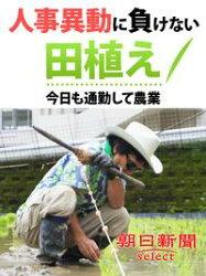 人事異動に負けない田植え 今日も通勤して農業
