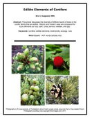 Edible Elements of Conifers