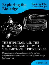 The Hypertail And The Infratail: Axes From The Sublime To The Ridiculous?【電子書籍】[ Robin and the Honey Badger ]