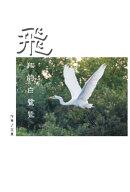 The Flying Egret
