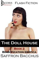 The Doll House - Book 2 - Bimbofication Erotica