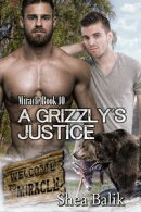 A Grizzly's Justice, Miracle Book 10