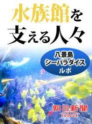 水族館を支える人々 八景島シーパラダイスルポ