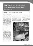 世界最古のスッポン化石発見 ─カメから探る太古の地球