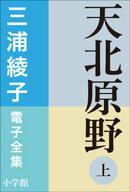 三浦綾子 電子全集 天北原野(上)