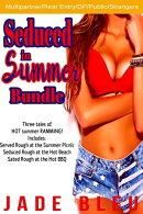 Seduced in Summer Bundle