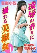 【官能小説】凌辱の香りに溺れる美淑女01