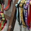 阿米特纪律方便时尚半链颜色 02 m [为狗宠物用品的衣领的训练] (礼品包装可用)