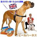 犬 ハーネス 引っ張り防止ハーネス 犬胴輪 リード&DVD付き しつけ用 きずなで訓練 犬の専門家キャロライン・ス…