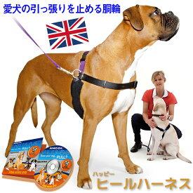 犬 ハーネス 引っ張り防止ハーネス 犬胴輪 リード&DVD付き しつけ用 きずなで訓練 犬の専門家キャロライン・スペンサー考案 オールサイズ同価格 犬用品 【メール便不可】ラロック ハッピーヒールハーネス