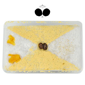 【ジェレミー&ジェマイマ】wata-hako 黒蜜きな粉