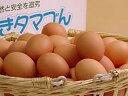 普段使い卵20個入