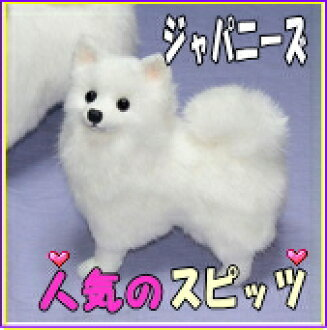 General stuffed / plush toy Spitz / / plush toy Spitz / Japan needs, Spitz dog (S)