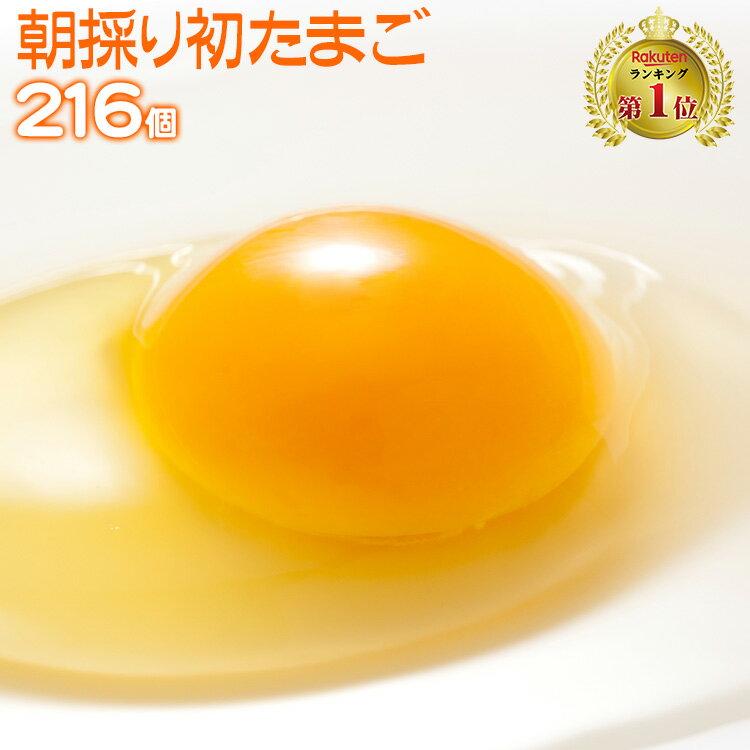 【送料無料 九州熊本産】 たまご 卵 玉子 卵焼き たまごかけごはん 朝採り 初 たまご 216個 (破損補償20個含む) 【美味しい 卵 九州 熊本県産 新鮮 生卵】