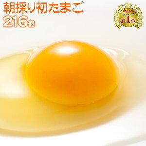 【送料無料 九州熊本産】 たまご 卵 玉子 卵焼き たまごかけごはん 朝採り 初 たまご 216個 (破損補償10個含む) 【美味しい 卵 九州 熊本県産 新鮮 生卵】