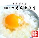 朝採りさくらたまご【L40個・M45個・MS54個】(破損補償10個含む)九州熊本産 【たまご 卵 玉子 卵焼き たまごか…