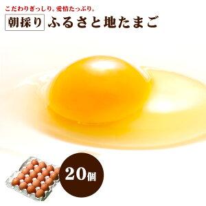【安心安全 農場直送】 朝採り ふるさと 地たまご 20個 (破損補償5個含む)【九州 熊本県産 新鮮 生卵 卵】