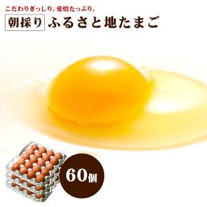 【安心安全 農場直送】 朝採り ふるさと 地たまご 60個 (破損補償10個含む)【九州 熊本県産 新鮮 卵 生卵】