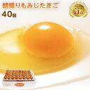 朝採り もみじ たまご 40個(破損補償10個含む) 【 卵 九州 熊本県産 新鮮 無添加 たまご ぷりぷり ぷるぷる 安全 …