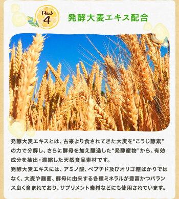 レモンケーキ(5個)セット【ひなたまこっこ送料無料ギフトプチギフト】