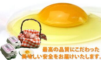 【送料無料】朝採り初たまご108個(破損補償10個含む)【美味しい卵九州熊本県産新鮮】