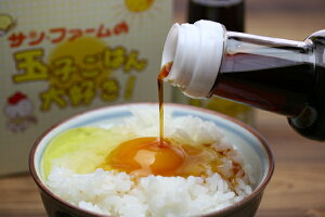 たまごごはん専用醤油「たまコッコー」と「玉子ご飯大好き」2本セット 【卵のおいしさ引き立つご飯に病み付き!】
