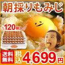 【送料無料】 朝採り もみじ たまご 120個(破損補償10個含む) 【美味しい 九州 熊本県産 新鮮 卵】