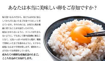 ふるさと地たまご60個入<九州熊本県産>
