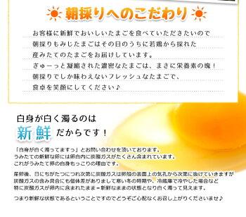 【送料無料】朝採りもみじたまご120個(破損補償10個含む)【美味しい九州熊本県産新鮮卵】
