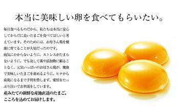 【送料無料】【定期購入】【送料無料サイズが選べる】朝採りさくらたまご【L40個・M45個・MS54個】(破損補償10個含む)【美味しい卵九州熊本県産新鮮】
