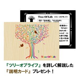 ツリーオブライフ(生命の樹)ギベオン隕石スターリングシルバーペンダントトップ