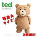送料無料【 等身大 TED テッド 特大 ぬいぐるみ 53cm 】テッドグッズ テディベア インチ コメディー Tedグッ…