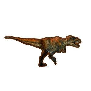 INA【恐竜 ワッペン ティラノサウルス DSS001】子ども キャラクター グッズ ダイナソー シール ワッペン アップリケ 接着 アイロン デコシール かばん アイロン接着 スモ