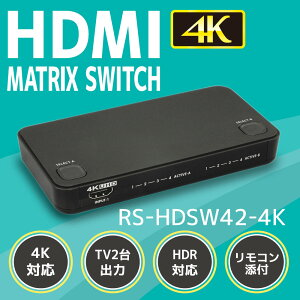RS-HDSW42-4Kイメージ