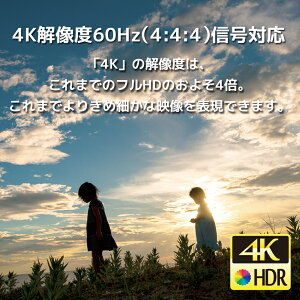 RS-HDSW41-4K4K