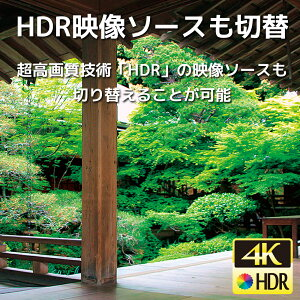 RS-HDSW41-4KHDR