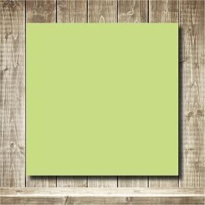 ジャンボ折り紙(大きい折り紙 横265mm×縦265mm ウグイス・両面同色・中厚口 25枚入り)