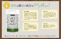 【単品購入】送料無料オーガニック・ウィートグラスパウダー(有機小麦若葉)100g有機JAS認証グルテンフリーメール便(同梱不可)