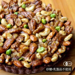 オーガニック・Vivo木の実いっぱいのローチョコレートタルト ナッツ 有機JAS認証 アイスケーキ ギフト ロースイーツ グルテンフリー 低GI 乳製品・卵・小麦・砂糖不使用 無添加 ヴィーガン
